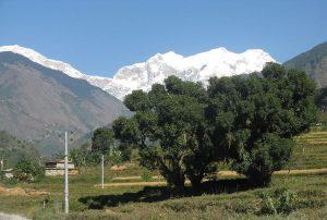 Round Manaslu Trekking