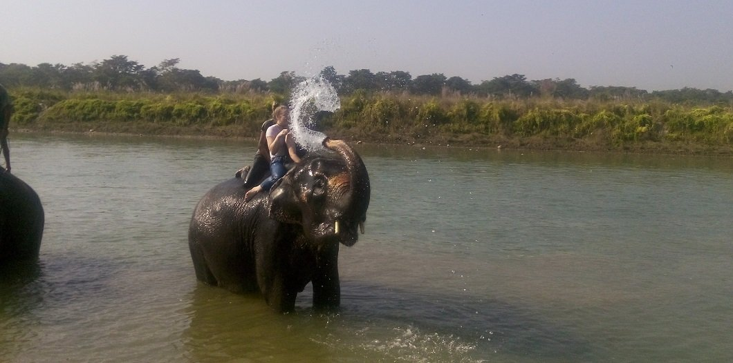 Elephant bath activity at Rapti river Sauraha chitwan