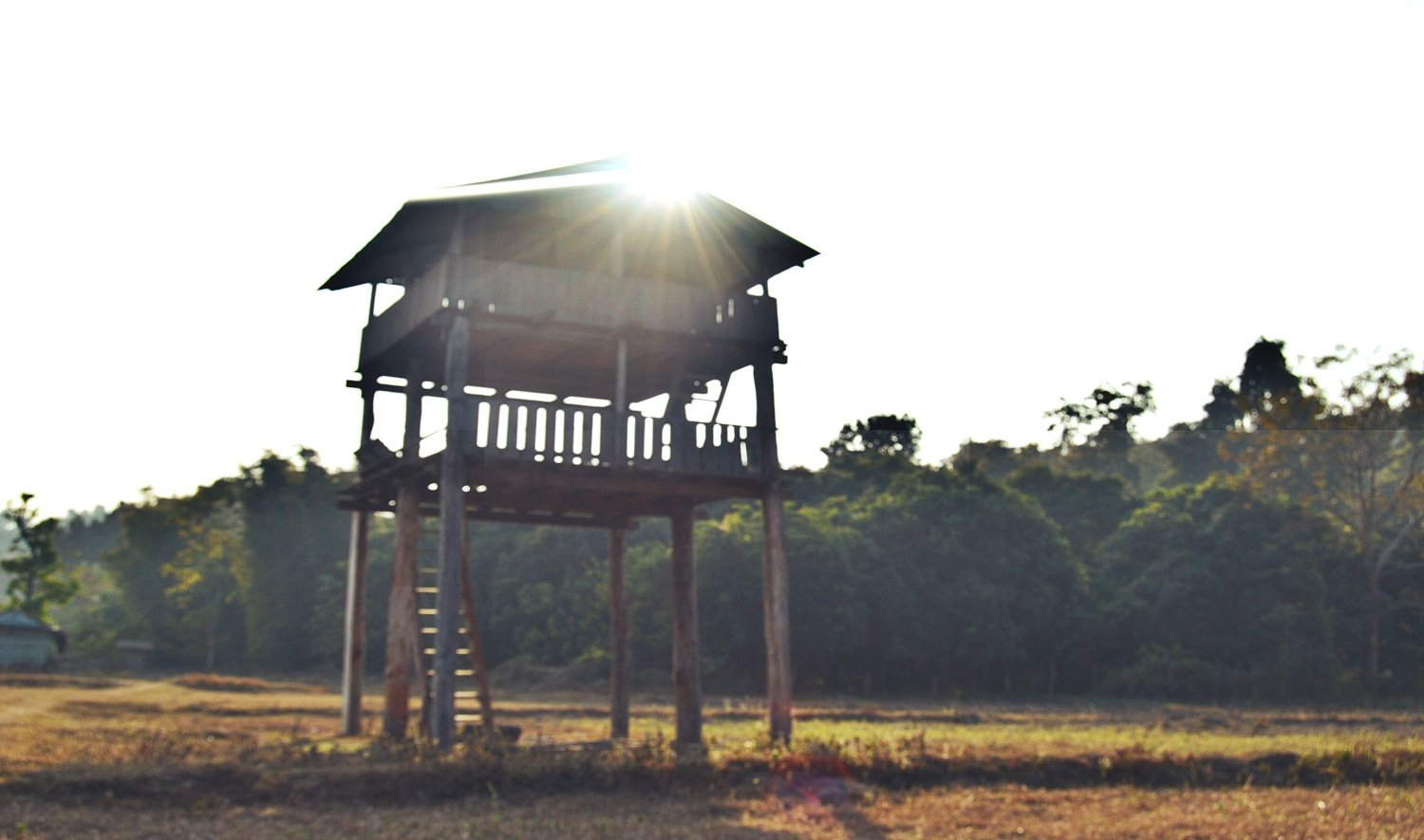 Tower Night Stay Chitwan Sauraha