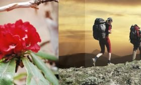 Visit Trekking in Nepal Best time of the year Best time To Trek & Visit In Nepal